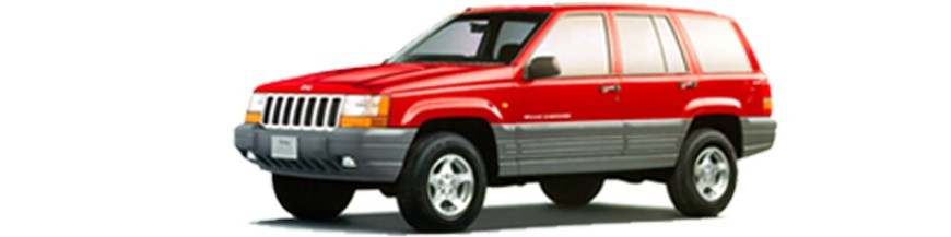 ZJ (1993-1998)